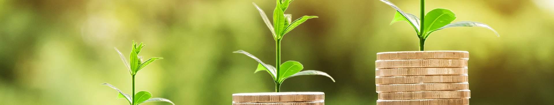 Quelles solutions business pour gagner en compétitivité ?